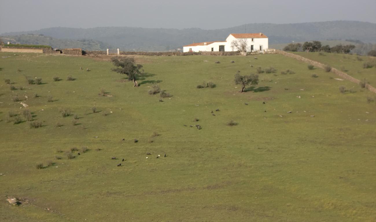 La Dehesa de la Vallée de Los Pedroches