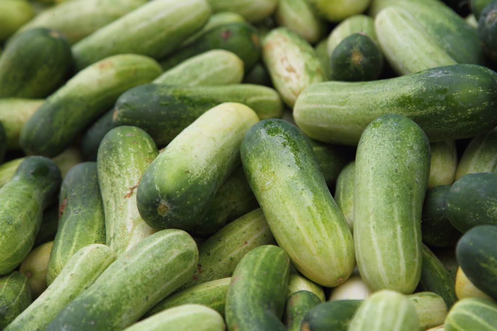 Salade de jambon pata negra au concombre