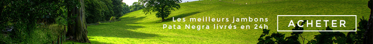 pata_negra_prix